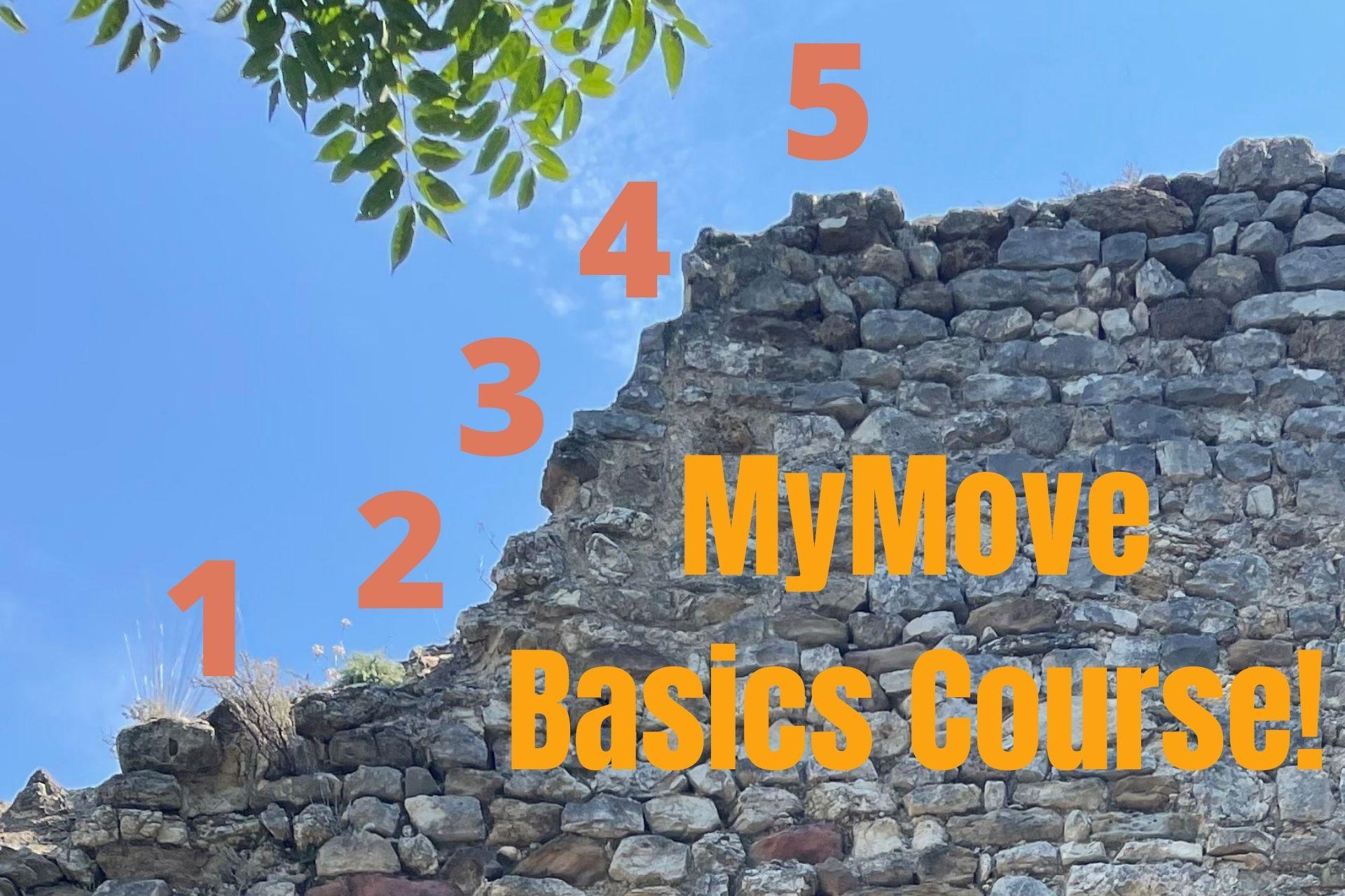 MyMove Basics